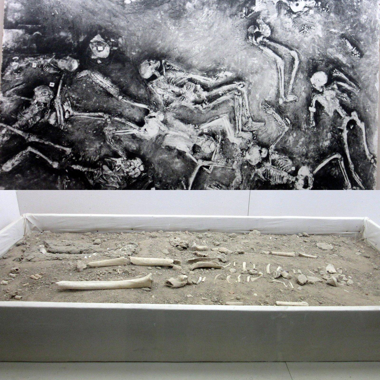 44 Skeletons Found in Single Room